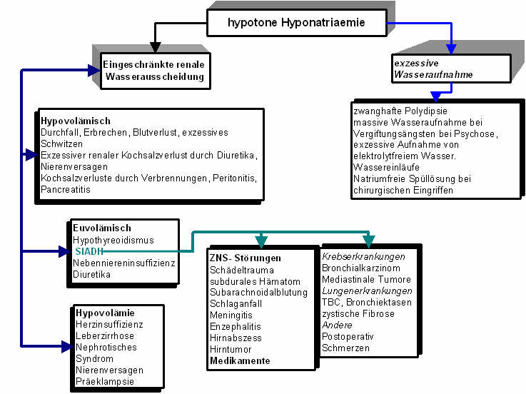 hypothyreose therapie leitlinie